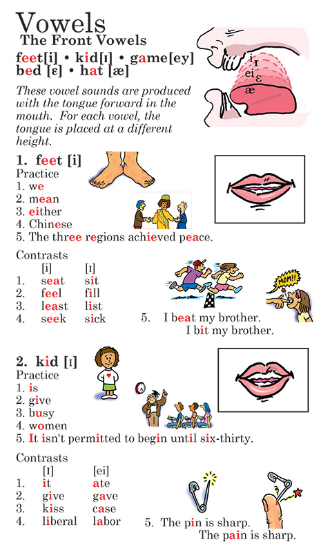 Vowels, consonants and their combinations